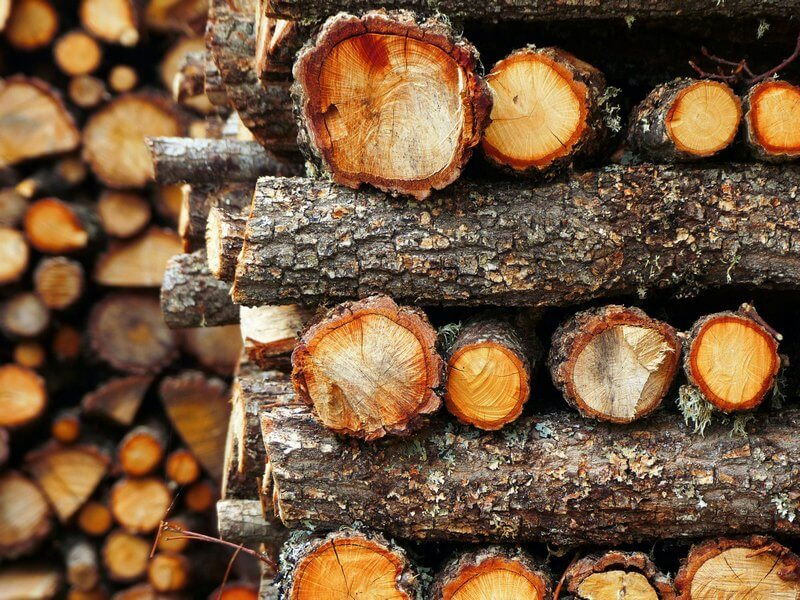 Ideas for a Bug Hotel? Build a Log Pile Instead