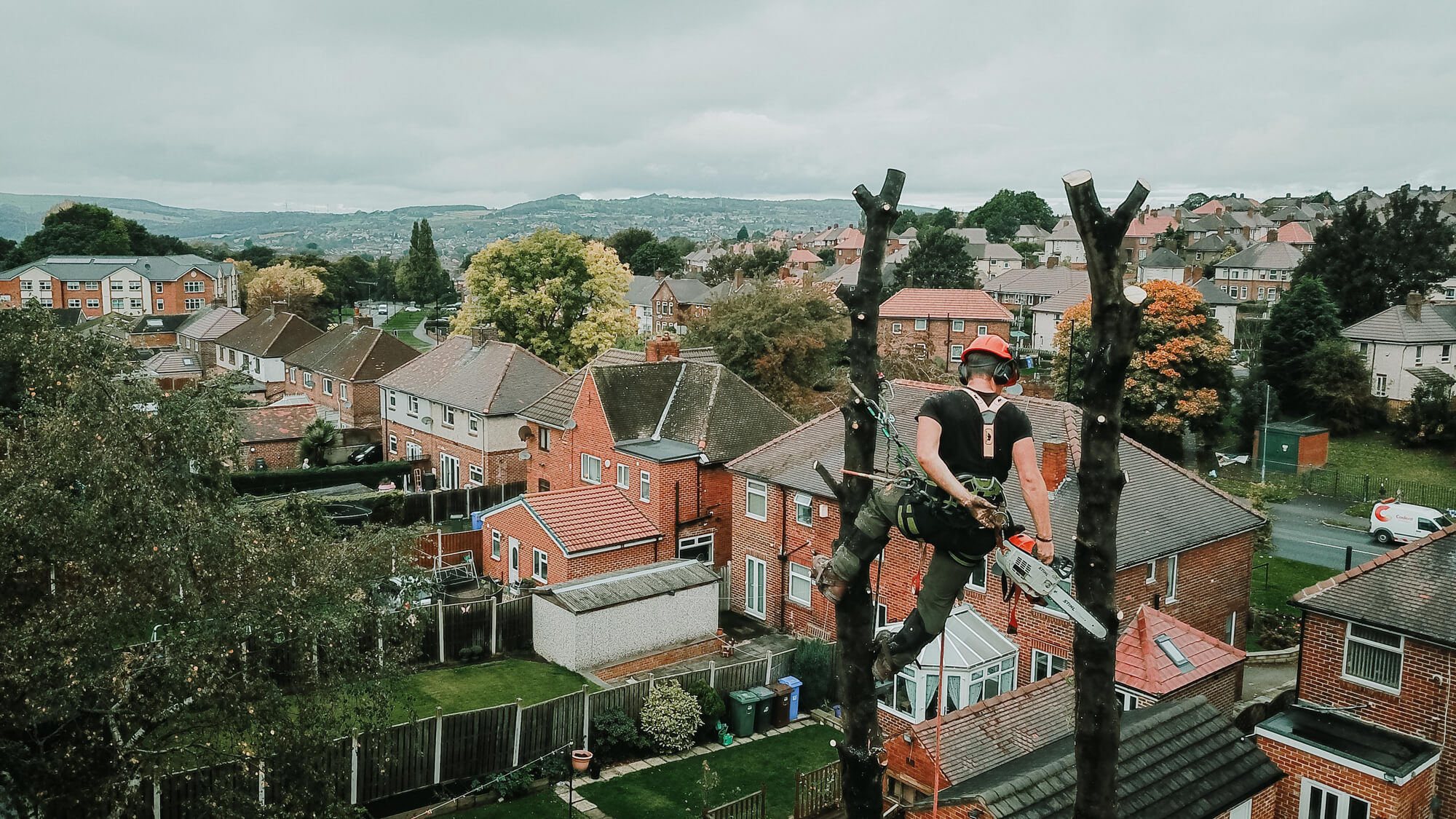 An aerial shot of a tree surgeon dismantling a tree in Hilsborough, Sheffield